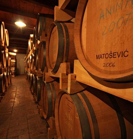 Matošević_Webpic_2