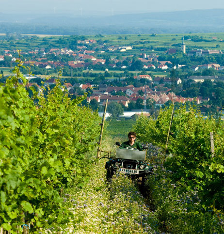 Heinrich_webpic3.jpg